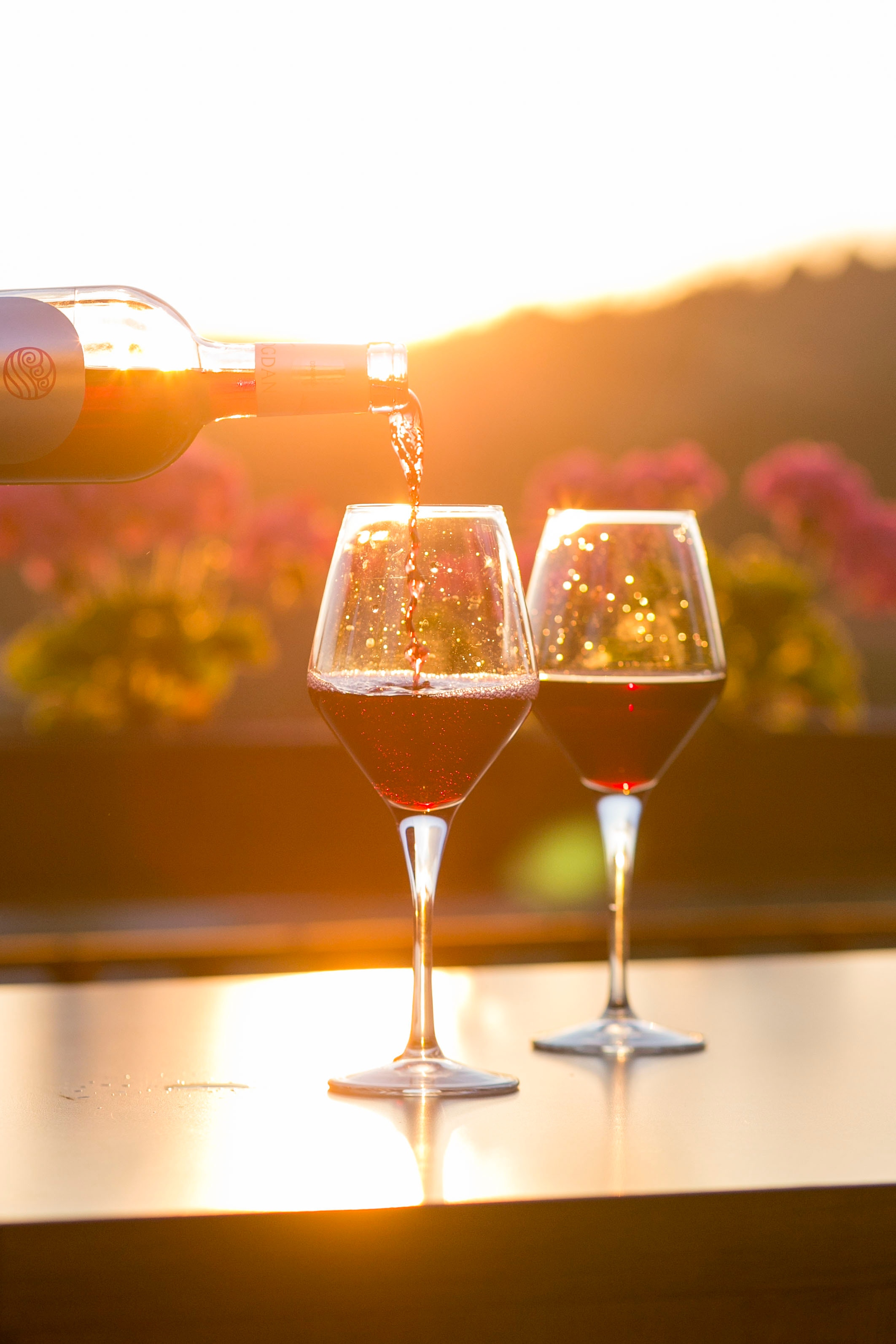 Vines and Sunshine: Why Solar Energy is the Perfect Wine Pairing
