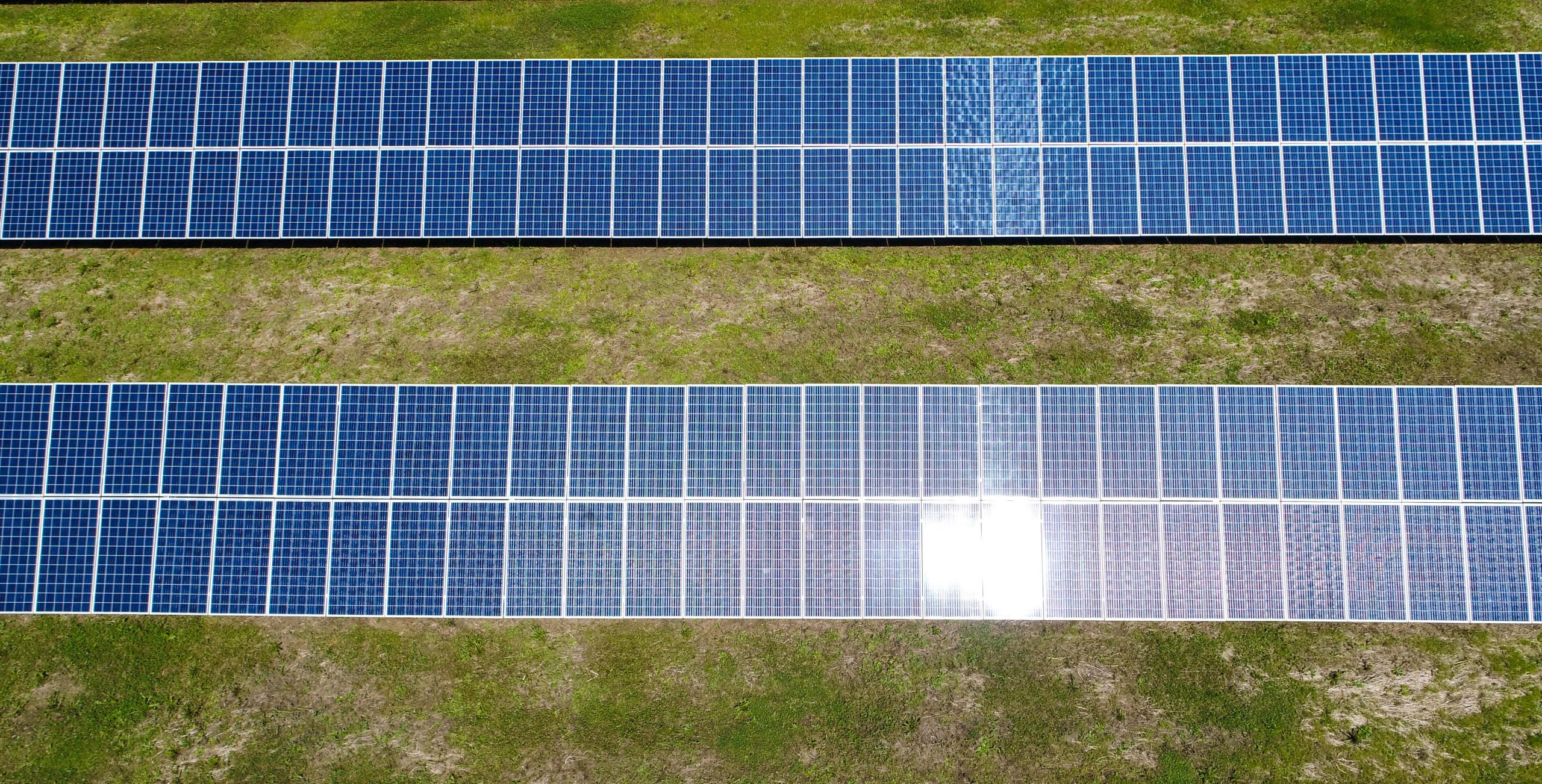4 Reasons Why Your Business Should Go Solar for Tax Season: